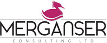 MERGANSER CONSULTING LTD